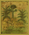 Codex techialoyan de Cuajimalpa.png