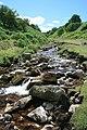 Cogden Gill, View Upstream - geograph.org.uk - 511625.jpg