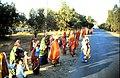 Colorful rajasthan.jpg