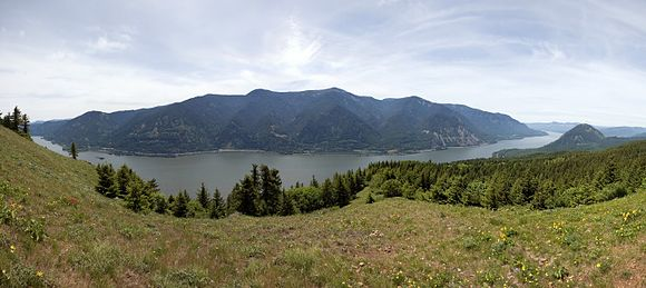 Panoramic view of Columbia River Gorge from Dog Mountain in Washington ColumbiaRGorgePano.jpg