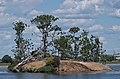 Cormorant Island-329.jpg