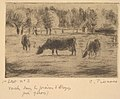 Cows in the Fields of Éragny, near Gisors MET DP821729.jpg