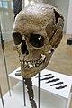 Cultural History (historisk) Museum Oslo. VIKINGR Norwegian Viking-Age Exhibition 14 Grave find Nordre Kjølen, Solør. Sword Spear Axe Arrows Skull (woman 155 cm 18-19 years old. Female warrior? Kvinnelig kriger?) Late 10th c. 2020-02.jpg