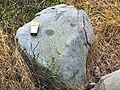 Cup marked rock, Bingley Moor (detail) - geograph.org.uk - 44673.jpg