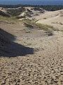 Curonian spit (Kursu kaapa) - panoramio.jpg