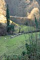 Curva Tronqueo - panoramio.jpg
