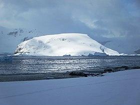 Cuverville Island (16226487525).jpg