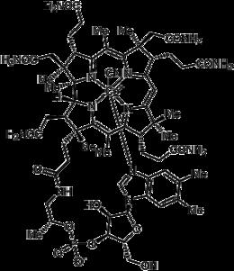 Cyanocobalamin-b12.png
