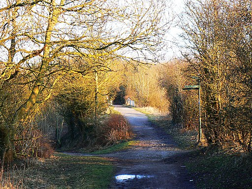 Cycle route 45, MandSWJR trackbed, Swindon - geograph.org.uk - 1716525