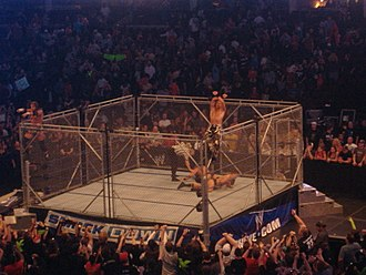 D-Generation X - DX after a Steel Cage match against The Legacy