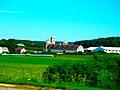 Dairy Farm near Lodi - panoramio.jpg