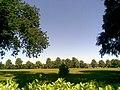 Dallington Park - geograph.org.uk - 1918393.jpg