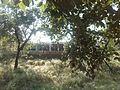 Darbar Faizan e Qalander , Syed Qaiser Shah , Kot Nabi Shah Phalia - panoramio (18).jpg