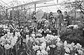 De Keukenhof geopend bloemenmeisjes, Bestanddeelnr 925-4950.jpg