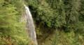 Denman Falls is located along Westside Road. (63c3217f-acf3-469a-a769-59b5f57766d0).png