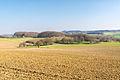 Detmold - 2015-04-19 - Hornoldendorf (16).jpg