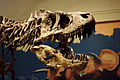 Dinosaurs in Their Time, Carnegie Museum of Natural History, 2013-12-14 05.jpg