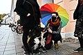 Dogs at Heameeleavaldus October 4th 2020 in Tartu, Estonia 04.jpg