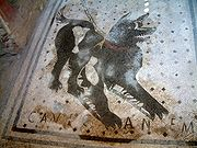 Cave canem mosaics ('Beware of the Dog') were a popular motif for the threshold of Roman villas.