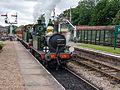Double headed train arriving at Horstead Keynes (9131813836).jpg