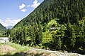 Dowarian (bank of Neelam River at the altitude of 1,615 meters) AJK Pakistan.JPG