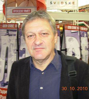 Dragan Velikić cover