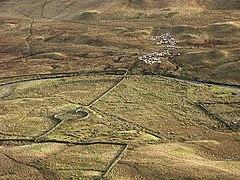 Driving the sheep home - geograph.org.uk - 662510.jpg