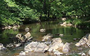 Duke Forest -  New Hope Creek, Duke Forest Korstian Division.
