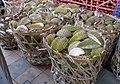Durian shells.jpg