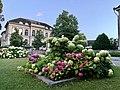 ETH Zurich, Swiss Federal Institute of Technology, Zurich University (Ank Kumar) 05.jpg