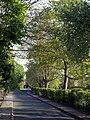 Early Morning on Station Lane, Hedon - geograph.org.uk - 794206.jpg