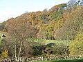 East Allen Dale at Sinderhope (10) - geograph.org.uk - 1585640.jpg