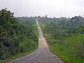 Efate main highway, Vanuatu, near Klem's Hill, 5 June 2006 - Flickr - PhillipC.jpg