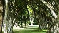 El Salvador - Corinto Golf Club, Hole 14 - panoramio (1).jpg