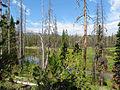 Elk Creek (15360933766).jpg