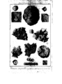 Encyclopedie volume 5-190.png