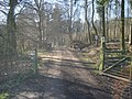 Entrance to Ladywell Coppice - geograph.org.uk - 733288.jpg