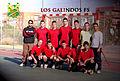 Equipo Los Galindos FS.jpg