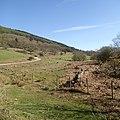 Eskdale, UK - panoramio (11).jpg