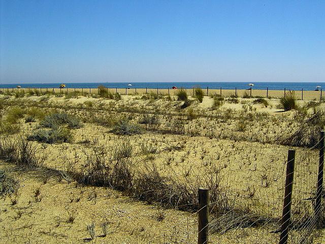 Playa del Espigón Juan Carlos I