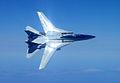 F-14B VF-11 2005 Right Bank.jpg