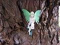 Fairy, Capel Blaunwaun - geograph.org.uk - 654743.jpg