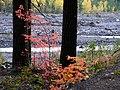 Fall colors (0add8b5a8e434bd480cebc2ab0aff816).JPG