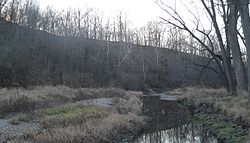 Steep wooded slope rising above creek