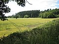 Farmland off the Bolstone Road - geograph.org.uk - 892179.jpg