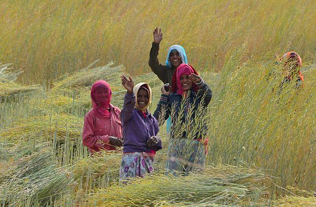 Femmes, région de Ranakhpur.jpg