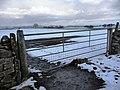Field gate, Whipperdale Bank - geograph.org.uk - 1726654.jpg