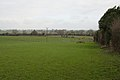 Fields, Redworth - geograph.org.uk - 2294479.jpg
