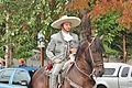 Fiestas Patrias Parade, South Park, Seattle, 2015 - 237 - the horses (21570802996).jpg