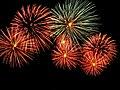 Fireworks - Adelaide Skyshow 2010.jpg